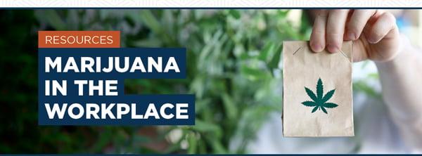 marijuana-in-the-workplace