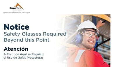 Poster - Safety Glasses