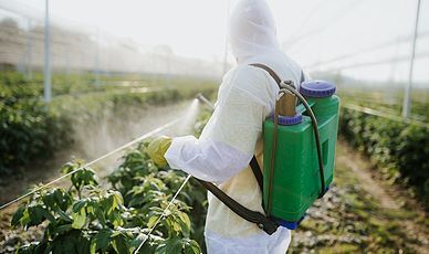 Pesticide Basics - SPANISH